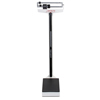 Detecto 339 400 lb/175 kg Capacity Physician Beam Scale w/ Height Rod