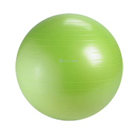 Gaiam 05-61848 Restore Strong Back Stability Ball Kit-65cm